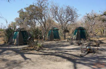 Delta Camping