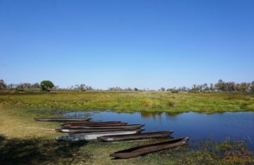Mekoros Delta